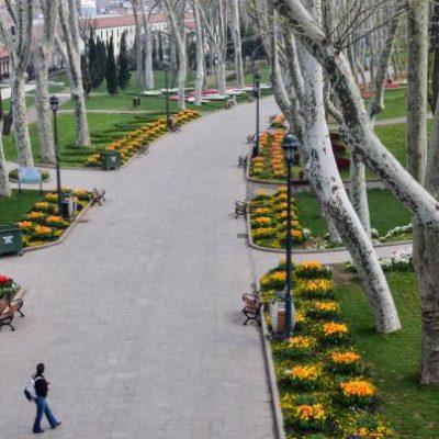 İstanbul Ağaç